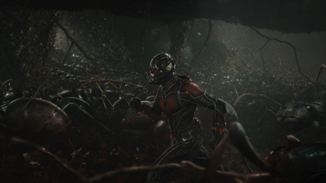 Ant-Man-Running-with-Ant-Army-Marvel-HD-Photo