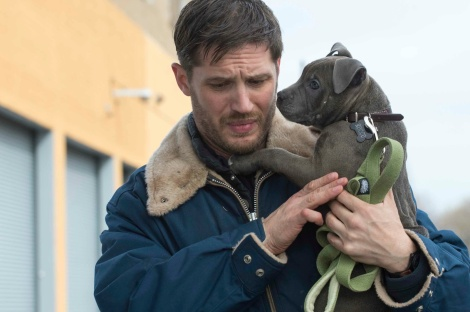 the-drop-tom-hardy-dog.jpg